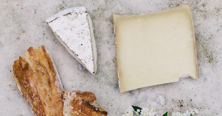 犬にチーズを与えても大丈夫! 塩分やアレルギーなどの注意点や手作りレシピなどを紹介