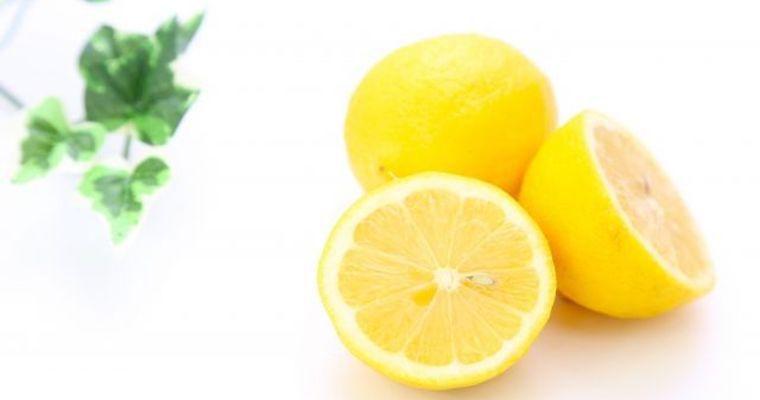 犬はレモンを食べても大丈夫!与え方やスプレーでしつけができるかを解説