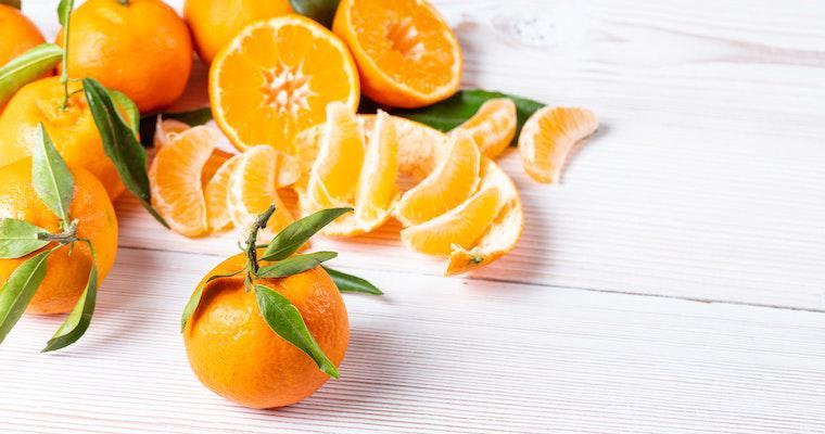 犬はオレンジを食べても大丈夫? オレンジジュースやアイスの注意点を紹介