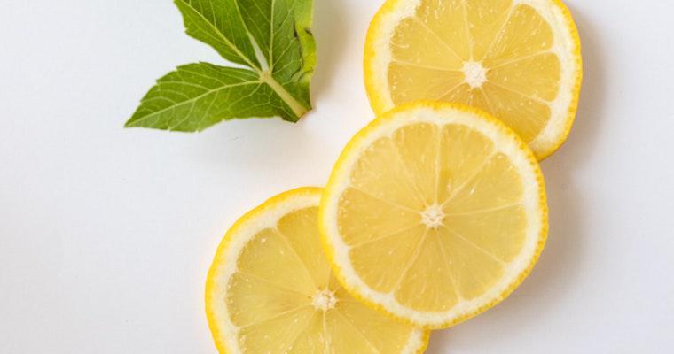 猫はレモンを食べても大丈夫? 嫌がる香りを利用して、しつけや猫よけに使うことも