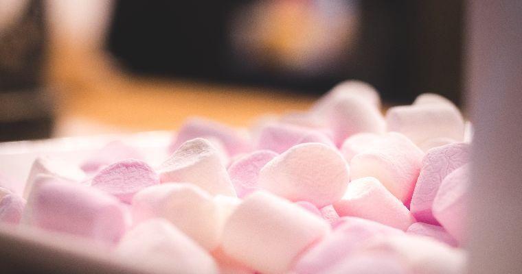 犬はマシュマロを食べても大丈夫? 糖分の摂りすぎ・アレルギーのリスクも