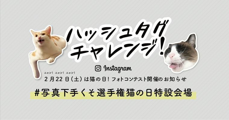 【お知らせ】写真撮影が苦手な人ほど有利? 「猫のフォトコンテスト」を開催!
