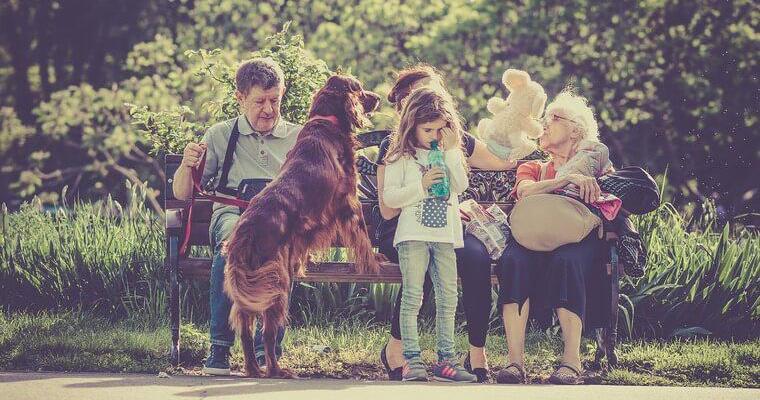 犬も嫉妬するの? 嫉妬したときの行動やその対処の仕方を紹介