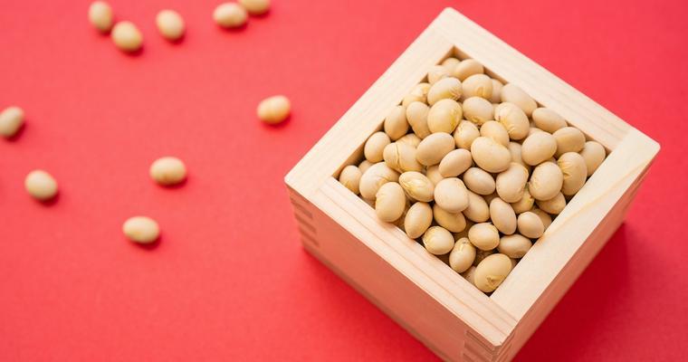 犬は大豆を食べても大丈夫! 与え方やアレルギー症状について解説