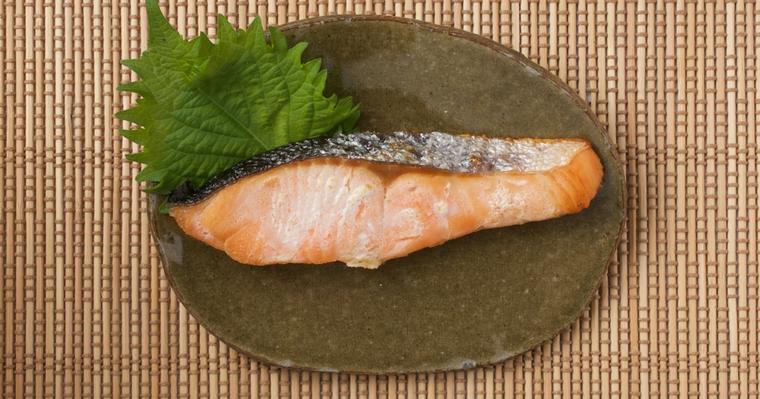 犬に鮭(サーモン)は大丈夫! 適切な与え方や含まれる栄養などを紹介【栄養士監修】