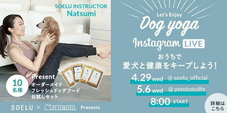 おうち時間の運動不足を愛犬と楽しく解消! オンラインドッグヨガを開催します。
