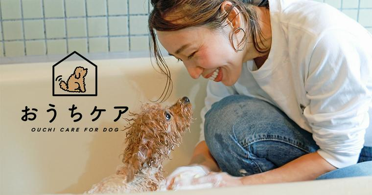 【動画で解説】おうち時間で愛犬のシャンプーをしよう! 自宅でのやり方や頻度、嫌がる場合のコツ