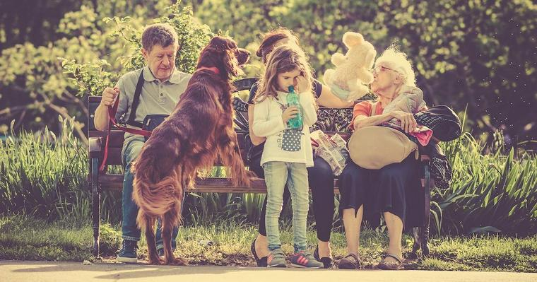 犬とコミュニケーションってどう取るの? アニマル・ウェルフェアにのっとった犬の飼い方とは