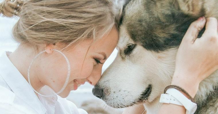 アニマルウェルフェアとは? 日本が動物福祉先進国になるために知るべきこと