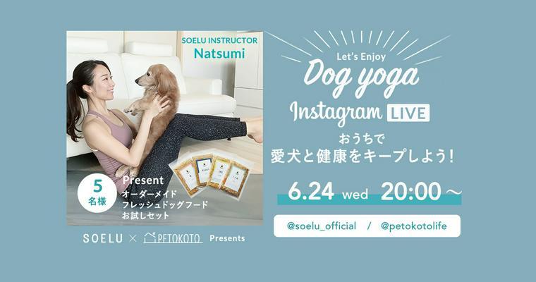 オンラインドッグヨガ第2弾「SOELU」×「ペトこと」を6/24に開催します。