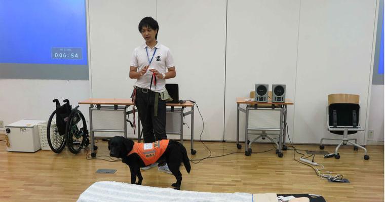 【動画で解説】聴導犬の訓練や仕事を紹介。聴導犬に向いている犬種や稼働数についても。