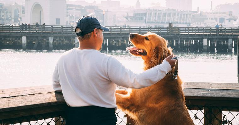 犬がしゃべるのには理由がある? 飼い主へ伝えたい思いとは