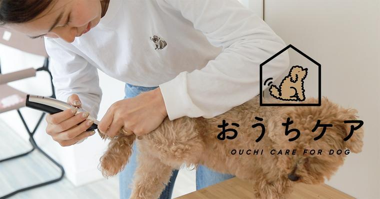 【動画で解説】おうちでできる愛犬のバリカン。使い方や注意点、おすすめ商品は?