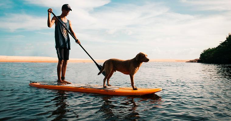 犬と川遊びを楽しもう! 関東近郊のおすすめスポットや注意点・持ち物を紹介
