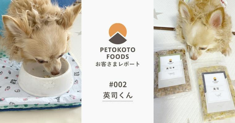アレルギーにダイエット……ごはんに困る元保護犬が出会ったのは、PETOKOTO FOODSでした。【お客さまレポート #002】