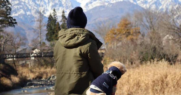 犬との冬の過ごし方。室内や散歩時や留守番時の冬対策などを紹介