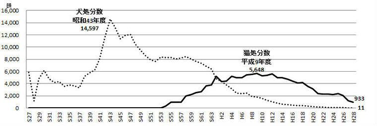 新潟県の殺処分数が初めて1000匹以下に 飼育方法の改善や譲渡数の増加が要因