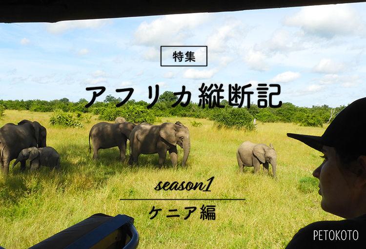 【アフリカ9カ国縦断記】女子一人旅で見つけたサバンナの野生動物たち(ケニア編)