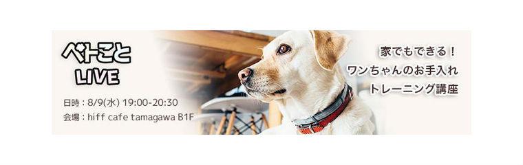 【お知らせ】8月9日「行動治療科獣医が教える犬のトレーニング講座」開催