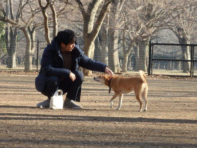 代々木公園ドッグランで社員犬へご褒美デイ! 犬を楽しませるのも仕事のうち【今日のシロップ】