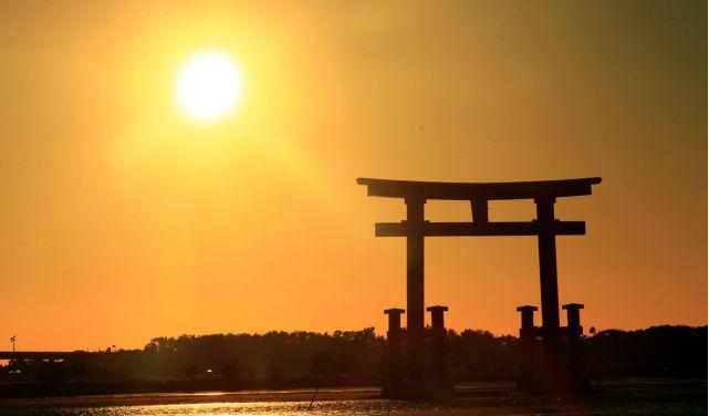 浜名湖周辺のペットと泊まれる宿おすすめ8選 ペットと観光がしやすい宿が満載