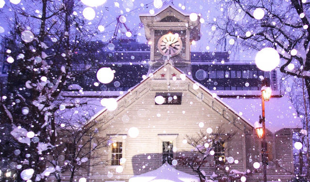 【決定版】札幌のおすすめペットと泊まれる宿4選!温泉付きやドッグラン付きなど特徴別にご紹介♪