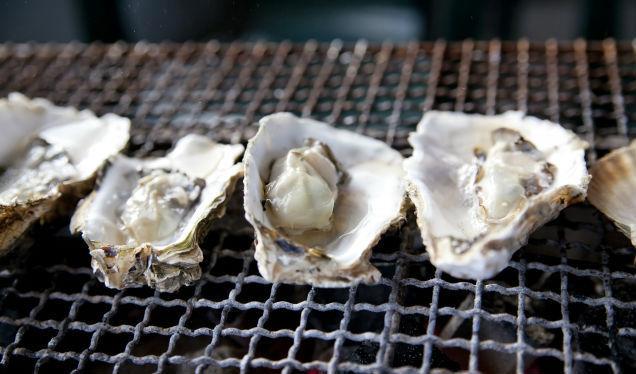 犬は貝を食べても大丈夫? 牡蠣やしじみ、ホタテなど危険性や注意点を解説