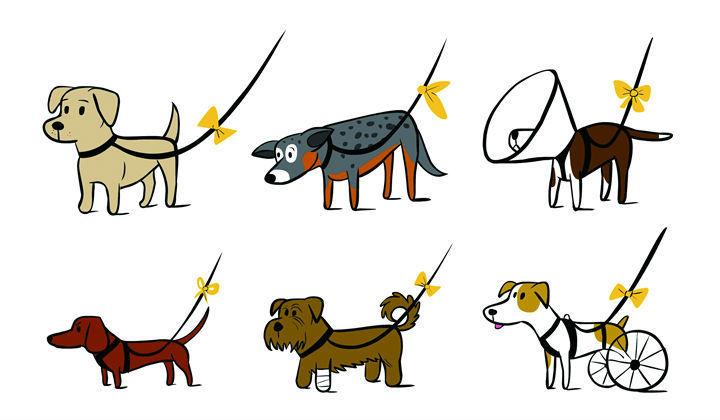 イエロードッグプロジェクトの意味|黄色いリボンをした犬はそっとしておいて!